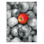 One Red Apple Spiral Notebook