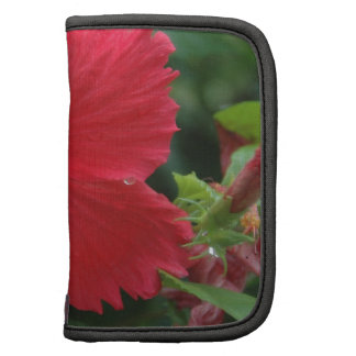 One red hibiscus planners