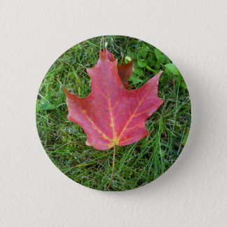 One Red Maple Leaf on grass Pinback Button