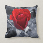 One Red Rose Pillow