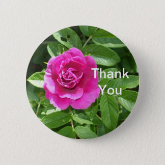 One Red Rose Pinback Button