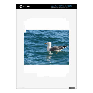 One seagull floating on the sea surface iPad 3 decal