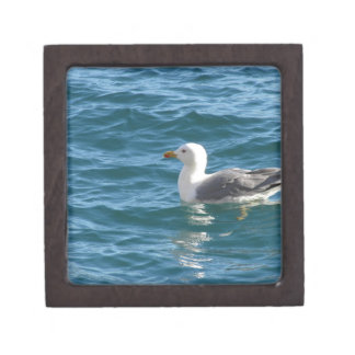One seagull floating on the sea surface keepsake box