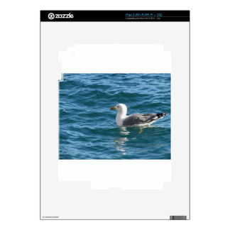 One seagull floating on the sea surface skins for the iPad 2