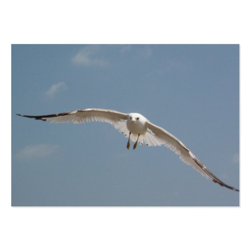 One Seagull Flying in Air Business Card Template