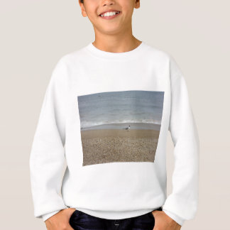 One seagull sweatshirt