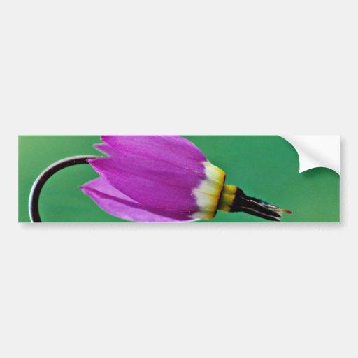 One shooting star flower against green  flowers car bumper sticker