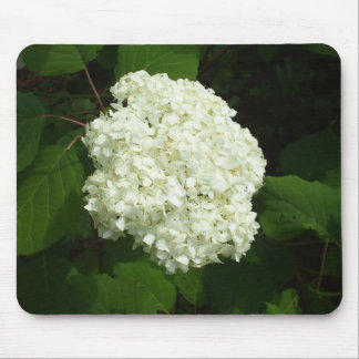 One Snowball- Hydrangia Bloom Mouse Pad