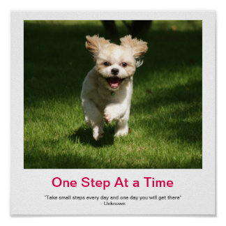ONE STEP AT A TIME demotivational poster
