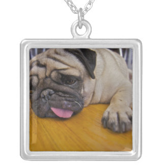 One Too Many Pug Dog Necklace