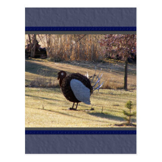 One Tough Old Bird Postcard
