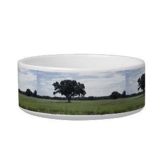 One Tree Bowl