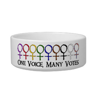 One Voice, Many Votes Pet Water Bowl