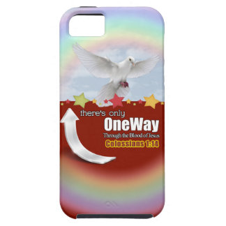 One Way Vibe iPhone 5/5S Case