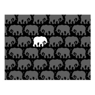 One White Elephant in a Herd Post Cards