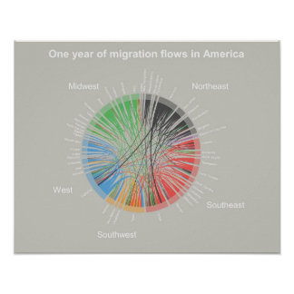 One year of migration flows in America Poster