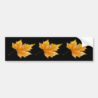 One Yellow and Gold Maple Leaf Bumper Sticker
