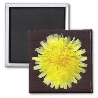One Yellow Wild Flower Fridge Magnet