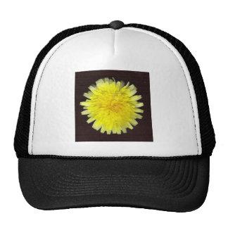 One Yellow Wild Flower Hats