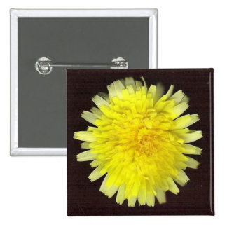 One Yellow Wild Flower Pinback Buttons