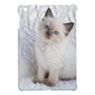 One young ragdoll cat sitting on fur in chair iPad mini case