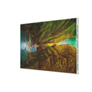 Oneonta Gorge in Columbia River Gorge Canvas Print