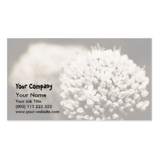 Onion flowers business card templates