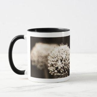 Onion flowers mug