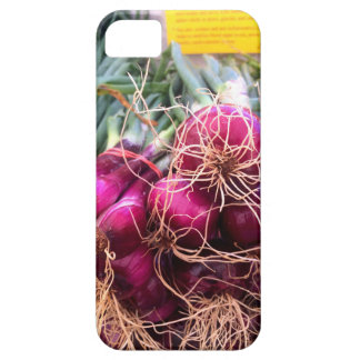Onions at the farmers market iPhone SE/5/5s case