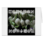 ONIONS  BACKGROUND PRODUCTS GREETING CARD