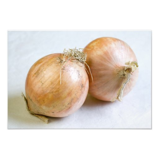 Onions For use in USA only.) Photo Art