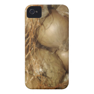 Onions In Net, Food Vegetables, Spicy Cooking iPhone 4 Case
