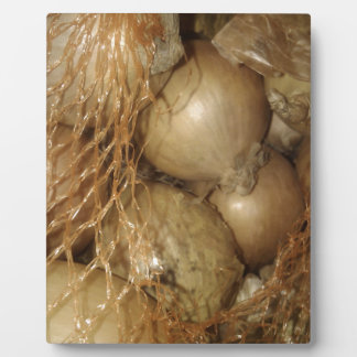 Onions In Net, Food Vegetables, Spicy Cooking Plaque