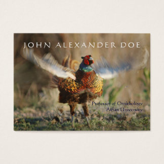 Onithologist - Ornithology Professor - Two Sided Business Card