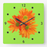 Only 3 Gerbera Daisy Blossoms + your backg. & idea Square Wall Clocks