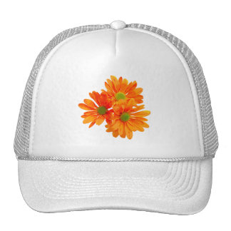 Only 3 Gerbera Daisy Blossoms + your text & ideas Trucker Hat