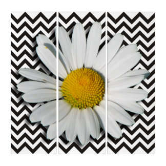 Only a Marguerite Blossom & black zigzag Stripes Triptych