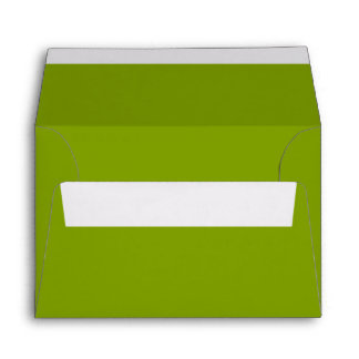 Only apple green cool rustic solid color OSCB43 Envelope