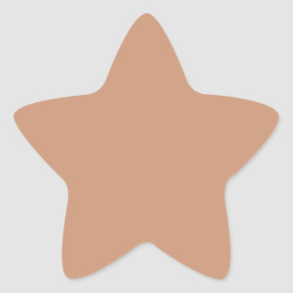 Only Beige Tan solid color Star Stickers