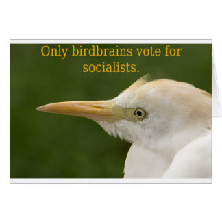 Only Birdbrains Vote for Socialists! Greeting Card