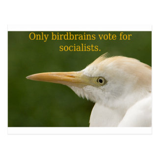 Only Birdbrains Vote for Socialists! Postcard