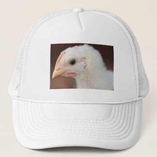 only chick trucker hat