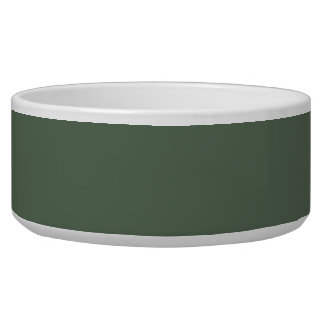 Only cypress green gorgeous solid color background dog food bowls