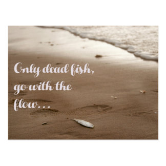 Only dead fish go with the flow - Fun Quote Postcard