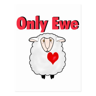 Only Ewe Postcard