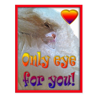 Only eye (s) for you.  Cat Postcard