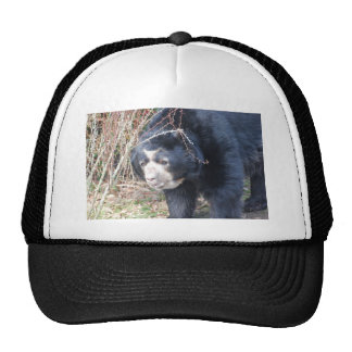 Only me hats