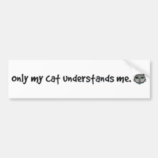 only my cat understands me bumper sticker