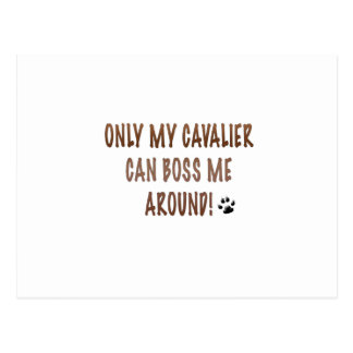 Only My Cavalier Can Boss Me Around! Postcard