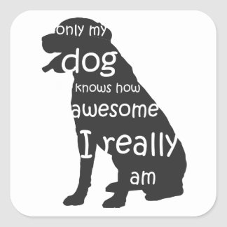only my dog knows how awesome I really am Square Sticker